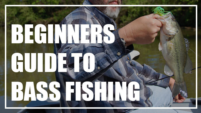 A Beginners Guide to Bass Fishing